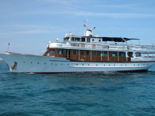 Мотор для яхты mercury 50eldto